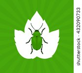 green beetle vector illustration | Shutterstock .eps vector #432090733