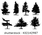 coniferous trees silhouettes... | Shutterstock .eps vector #432142987