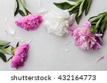 beautiful pink and white peony... | Shutterstock . vector #432164773