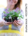 A Happy Woman Gardener Is...