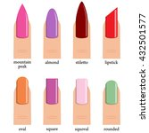 nail shape icons. types of... | Shutterstock .eps vector #432501577