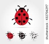 Illustration Of The Ladybug...