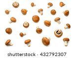 collection champignon isolated... | Shutterstock . vector #432792307
