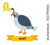 quail. q letter. cute children... | Shutterstock .eps vector #432795403