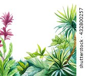 tropical leaves watercolor | Shutterstock . vector #432800257