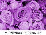 Purple roses in a wedding...