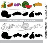 the ripe fruit set with shadows ... | Shutterstock .eps vector #432865237