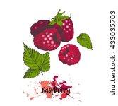 vector illustration of... | Shutterstock .eps vector #433035703
