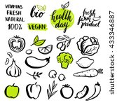 set of vector handwritten... | Shutterstock .eps vector #433346887