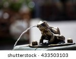 Fountain With Frogs In Torun ...