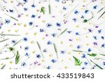 Pattern With Chamomile Flowers...