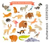north america animals... | Shutterstock . vector #433592563