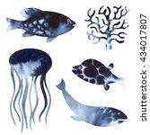 sea life watercolor. watercolor ... | Shutterstock . vector #434017807
