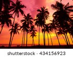 palm trees silhouettes on... | Shutterstock . vector #434156923