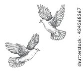 Hand Drawn Pair Of Flying Dove...