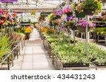 abundance of colorful flowers...   Shutterstock . vector #434431243