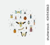 cute bugs and insects circle... | Shutterstock .eps vector #434543863