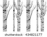 seamless pattern  background... | Shutterstock .eps vector #434821177