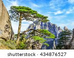 well known ying ke pine  or...   Shutterstock . vector #434876527
