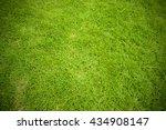green grass background     Shutterstock . vector #434908147
