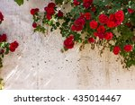frame of wild red roses in the... | Shutterstock . vector #435014467