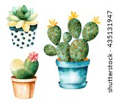 watercolor handpainted cactus... | Shutterstock . vector #435131947