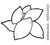 freehand drawn black and white... | Shutterstock .eps vector #435512323