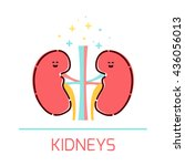 cute healthy kidneys icon made... | Shutterstock .eps vector #436056013