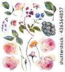 set vintage watercolor elements ... | Shutterstock . vector #436364857