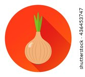 onion flat design icon isolated ... | Shutterstock .eps vector #436453747