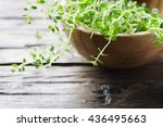 fresh green thyme on the wooden ... | Shutterstock . vector #436495663