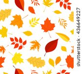 seamless vector pattern of... | Shutterstock .eps vector #436649227