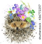 Cute Hedgehog. Hedgehog....
