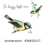 tit birds isolated on white.... | Shutterstock . vector #436810117