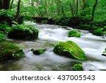 spring oirase valley | Shutterstock . vector #437005543