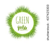 realistic border green grass... | Shutterstock .eps vector #437425303