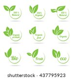 Set Of Bright Green Labels Wit...