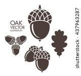 oak. acorn. leaf. vector... | Shutterstock .eps vector #437963287