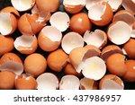 egg shell | Shutterstock . vector #437986957