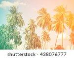 coconut tree background. retro...   Shutterstock . vector #438076777