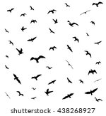 flying birds silhouettes on... | Shutterstock . vector #438268927