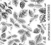 seamless pattern with leaf ... | Shutterstock . vector #438345883