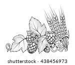 stylish hop branch and barley... | Shutterstock .eps vector #438456973