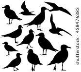 seagull silhouette isolated | Shutterstock .eps vector #438476383