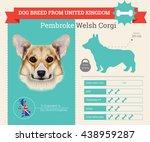 vector info graphic of pembroke ...   Shutterstock .eps vector #438959287