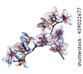 hand drawn orchid branch.... | Shutterstock .eps vector #439022677