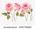 set of roses | Shutterstock .eps vector #439278283