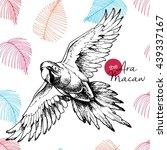 vector hand drawn illustration... | Shutterstock .eps vector #439337167