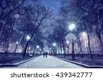 Night Winter Landscape In The...