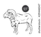 goat sketch | Shutterstock .eps vector #439448347
